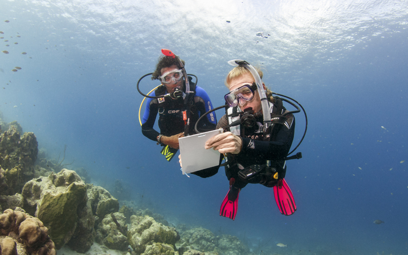 PADI Advanced Open water diver course in Mallorca
