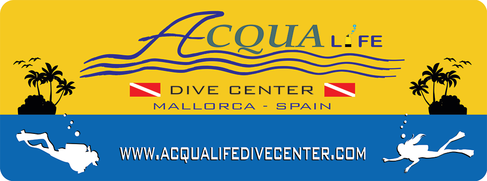 Book Scuba dive in Mallorca.